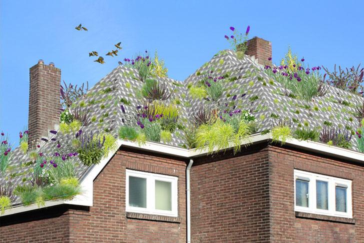 Sistema holandés que convierte cualquier tejado en un techo verde